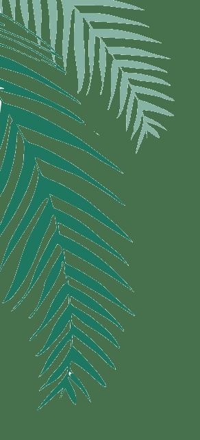 Desktop Pine FAQ@2x